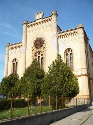 Sinagoga din Carei